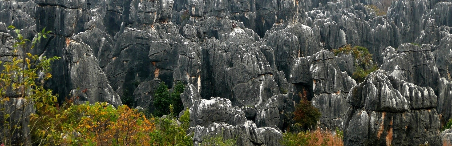 Shilin_Stone_Forest_01 (4)