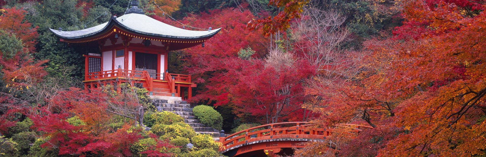 Japan_Tour_1920x620