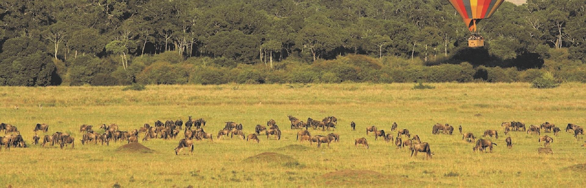 masai-mara-balloon-safari-feature (3)