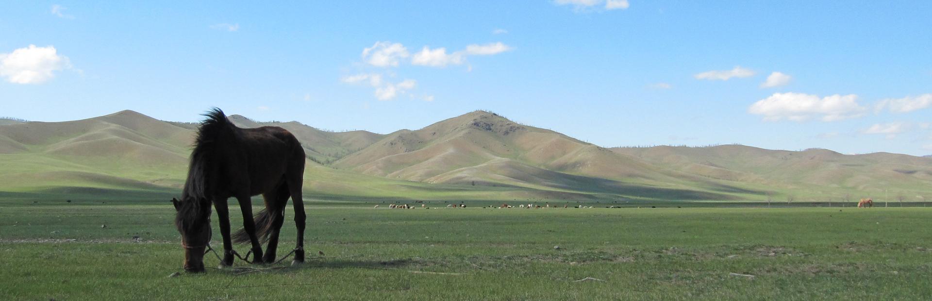 mongoliaslider